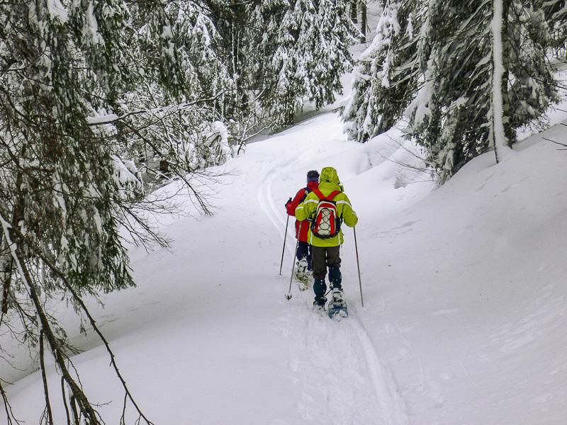 Raquette à neige dans les Vosges