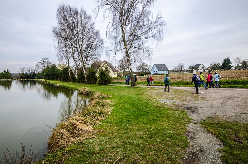 Balade le long des étangs du Sundgau