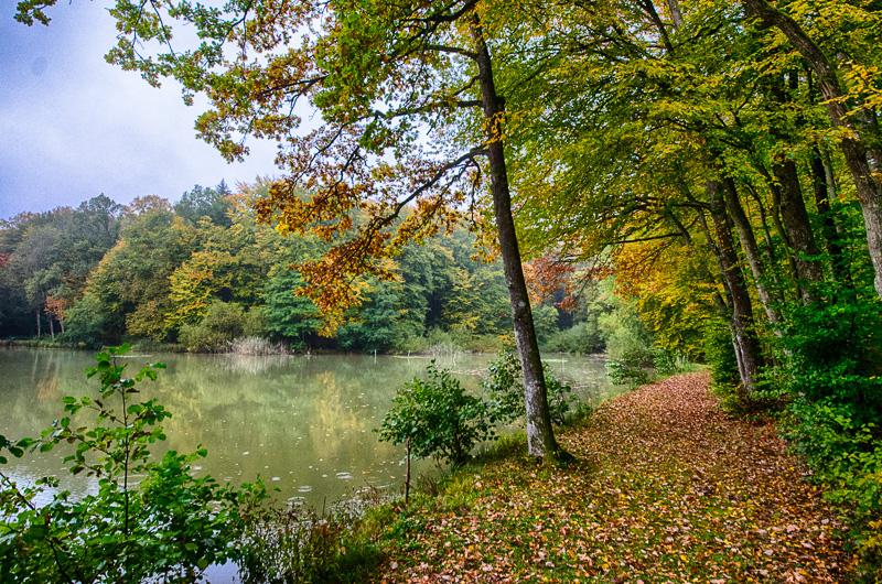 le Sundgau en automne