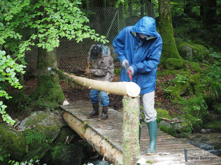 Pose d'une rambarde en bois sur la passerelle