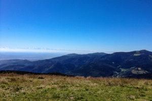 Alpes bernoises vues du Petit Ballon