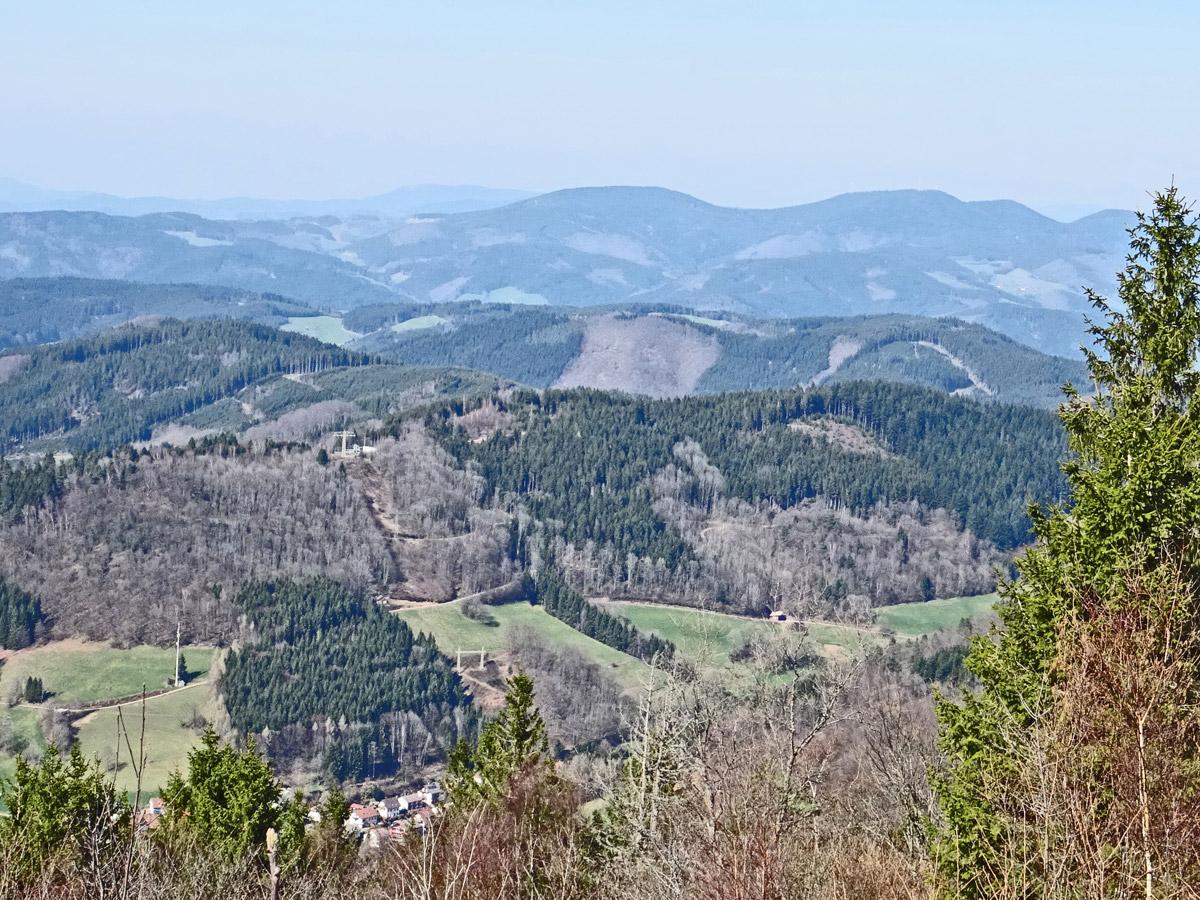 vue sur la Forêt Noire, Elztal