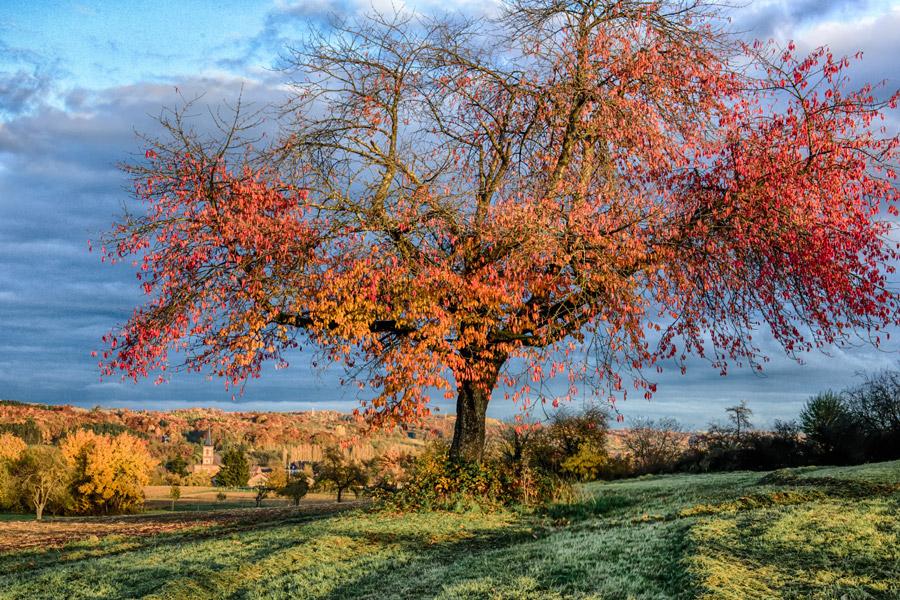 Randonnée, activité toutes saisons, automne