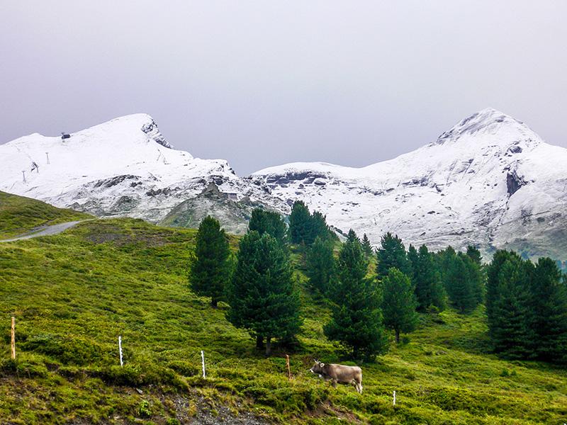 Le lauberhorn et le Maennlichen, Suisse