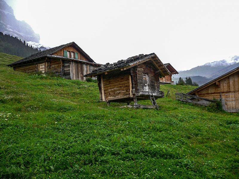 Pendant la descente vers Grindelwald
