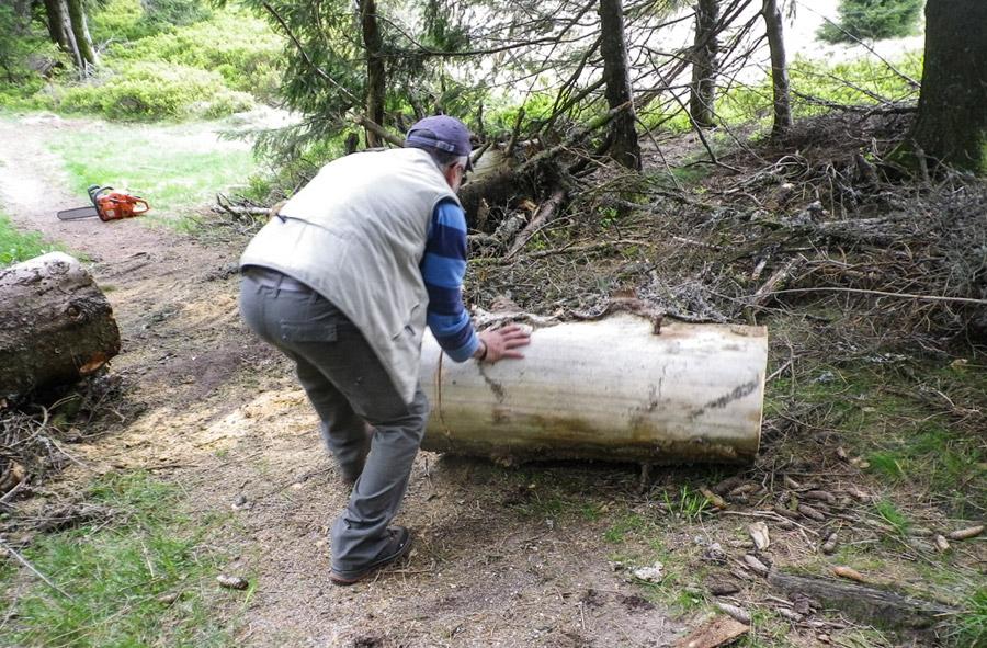 Un bénévole du Club Vosgien débarrasse un tronc d'arbre