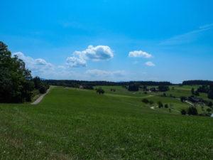 Le Stauffenberg, au pied de la Forêt-Noire