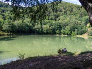 le lac du Lachtelweiher