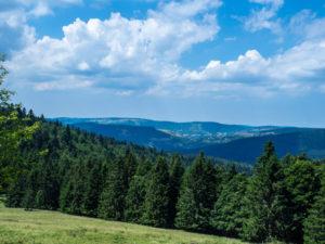 Un panorama, du haut du Grand Ventron