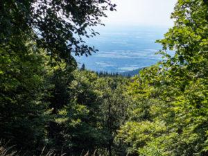 Vallée de Masevaux