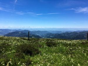 Du Belchen, très belle vue des Alpes