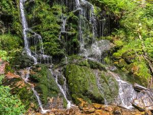Cascades à Todtnau