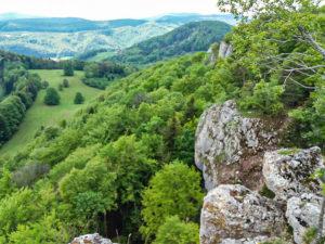 Le Raemelsberg, falaises calcaires