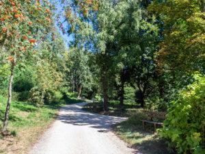 Sentier de l'arboretum d'Ihringen