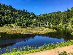 étang dans le secteur du Belchen