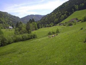 Sankt Wilhelm en Forêt Noire