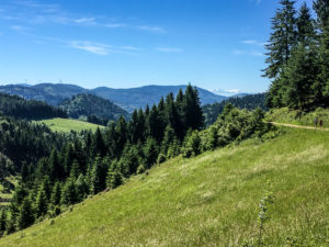 Sentier du Belchen, avec vue sur les Alpes