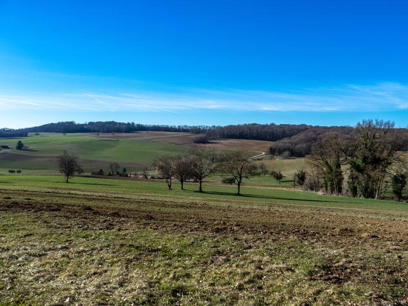 A Illfurth, champs et vue dégagée