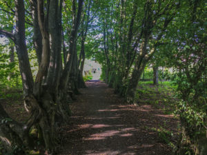 Le sentier des bunkers, ruelle du village