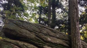 Près de Ribeauvillé, le rocher de la Paix d'Udine