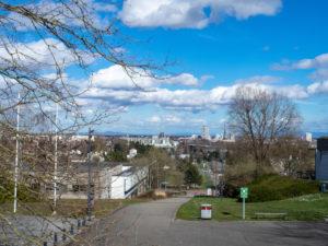 Vue de Mulhouse avec Forêt Noire