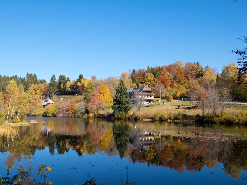 Le lac Klosterweiher en automne