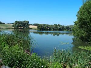 À côté d'Aspach-le-Bas, la retenue d'eau de Michelbach
